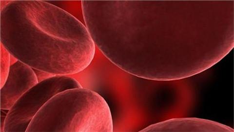 可汗学院 保健与医学-血液系统