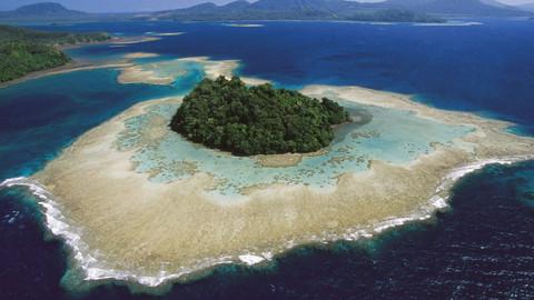 BBC:新几内亚探险
