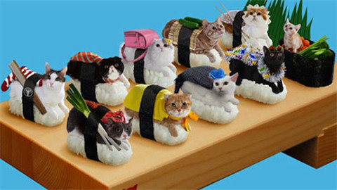 寿司与全球渔获