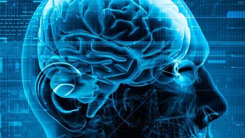 加利福尼亚大学公开课:意识的科学方法