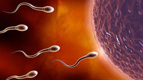 四川大学公开课:专家教你生殖保健知识