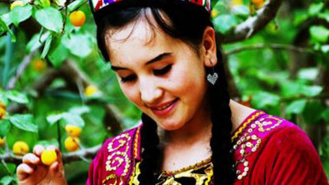 新疆农业大学公开课:新疆多民族文化